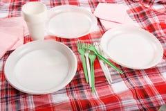 Picknick. platta på tableclothen Royaltyfri Foto