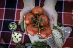 Picknick Rode plaid waarop een picknickvoedsel, barbecue, worsten op de brand, verse groenten, brood ligt Samenstelling, verse lu royalty-vrije stock foto's