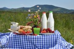 Picknick som förläggas på äng Royaltyfria Bilder