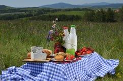 Picknick som förläggas på äng Royaltyfri Bild
