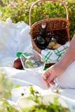 Picknick am sonnigen Sommertag lizenzfreies stockfoto