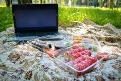 Picknick Sushi draußen an einem Sommertag Lizenzfreie Stockfotos