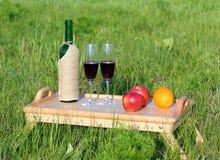 Picknick - tabe med vin och frukter Royaltyfri Bild