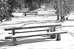 Picknick-Tabellen im Schnee Lizenzfreies Stockbild