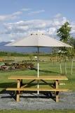Picknick-Tabellen-Regenschirm Lizenzfreies Stockfoto