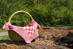 Picknick time Stock Image