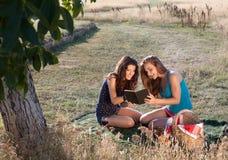Picknick und gutes Buch Lizenzfreie Stockfotografie