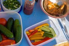 picknick Utomhus- matlagning Mat galler royaltyfria foton