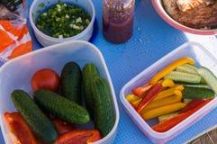 picknick Utomhus- matlagning Mat royaltyfri bild