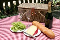 Picknick voor Horizontale Twee stock afbeelding