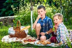 Picknick voor twee broers Stock Foto's