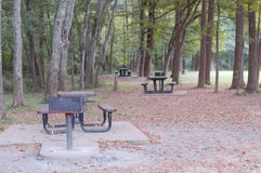 Picknick-Zeit am lokalen Park Lizenzfreie Stockfotos