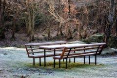 Picknickbänk med frost i skoglandskapet Royaltyfri Fotografi