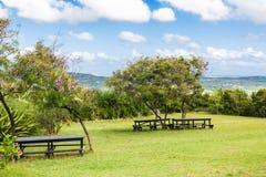 Picknickbänkar på en tropisk backe royaltyfria foton