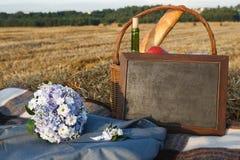 picknickbröllop Royaltyfri Fotografi
