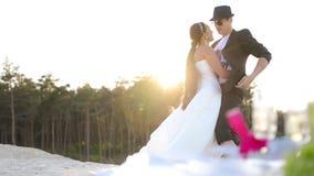 Picknickbröllopsresa tillsammans stock video