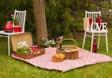 Picknicken parkerar på våren Arkivfoton