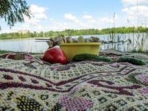 Picknicken Sie auf dem Ufer von einem Teich weg von der Stadt Lizenzfreies Stockbild