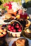 Picknicken Sie im Hinterhof an einem sonnigen Tag Lizenzfreie Stockfotografie
