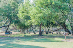 Picknickgebied in het Berg Gestreepte Nationale Park stock foto