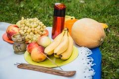 Picknickhintergrund mit Weißwein und Sommer trägt auf grünem Gras Früchte lizenzfreies stockfoto