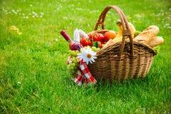 Picknickinställning på äng Royaltyfri Fotografi