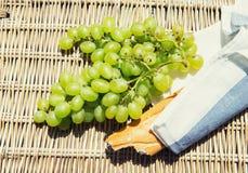 Picknickkonzept - Wein, Käse und Trauben lizenzfreies stockbild