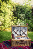 Picknickkorb Lizenzfreie Stockbilder