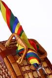Picknickkorb mit einem bunten Regenschirm Lizenzfreie Stockfotos