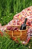 Picknickkorb mit Weinflasche und -trauben auf Rasen des grünen Grases lizenzfreies stockbild