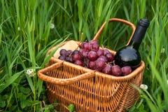 Picknickkorb mit Weinflasche und -trauben auf Rasen des grünen Grases stockbilder