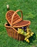 Picknickkorg med den mogna druvan, flaska av vin på gräset Arkivfoto