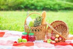 Picknickkorgen, frukt, fruktsaft i små flaskor, äpplen, ananassommar, vilar, den röda plädet, kopieringsutrymme för grönt gräs fotografering för bildbyråer