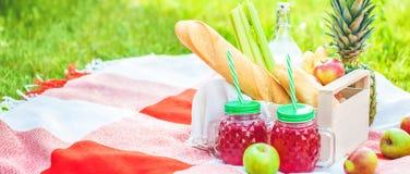 Picknickkorgen, frukt, fruktsaft i små flaskor, äpplen, ananassommar, vilar, plädet, det gräsCopyspace banret royaltyfria foton