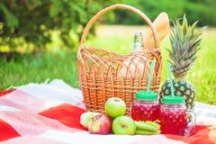 Picknickkorgen, frukt, fruktsaft i små flaskor, äpplen, mjölkar, ananassommar, vilar, plädet, gräskopieringsutrymme arkivbilder