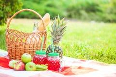 Picknickkorgen, frukt, fruktsaft i små flaskor, äpplen, mjölkar, ananassommar, vilar, plädet, gräskopieringsutrymme arkivfoton