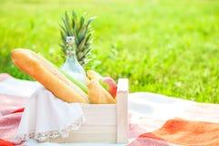 Picknickkorgen, frukt, mjölkar, äpplen, pineappesommar, vilar, plädet, gräskopieringsutrymme royaltyfria foton