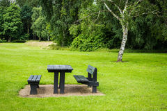 Picknicklijst dichtbij een bos in de zomer stock afbeeldingen