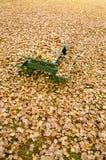 Picknicklijst die onder gouden de herfstbladeren wordt verborgen Stock Foto's