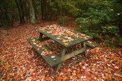 Picknicklijst en rode esdoornbladeren, gebladertekleuren Royalty-vrije Stock Afbeeldingen