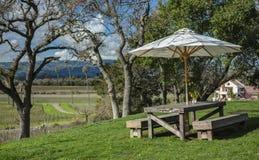 Picknicklijst met Mening van de Wijngaard van Californië stock afbeelding