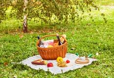 Picknickmand Stock Foto