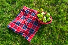 Picknickmand en deken royalty-vrije stock afbeeldingen