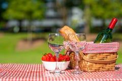 Picknickmand geruit met een tafelkleedwijn, baguette, aardbei, glazen, banner royalty-vrije stock foto's