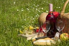 Picknickmand met voedsel, vruchten en fles wijn royalty-vrije stock afbeelding