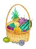 Picknickmand met vruchten, bessen en groenten stock afbeeldingen