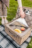 Picknickmand stock afbeelding