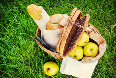 Picknickmat i den Wattled korgen Royaltyfri Bild