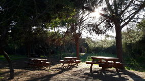 Picknickområde Royaltyfria Foton