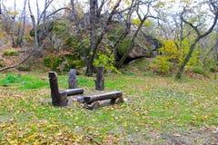 Picknickplaats in de herfstbos Stock Foto